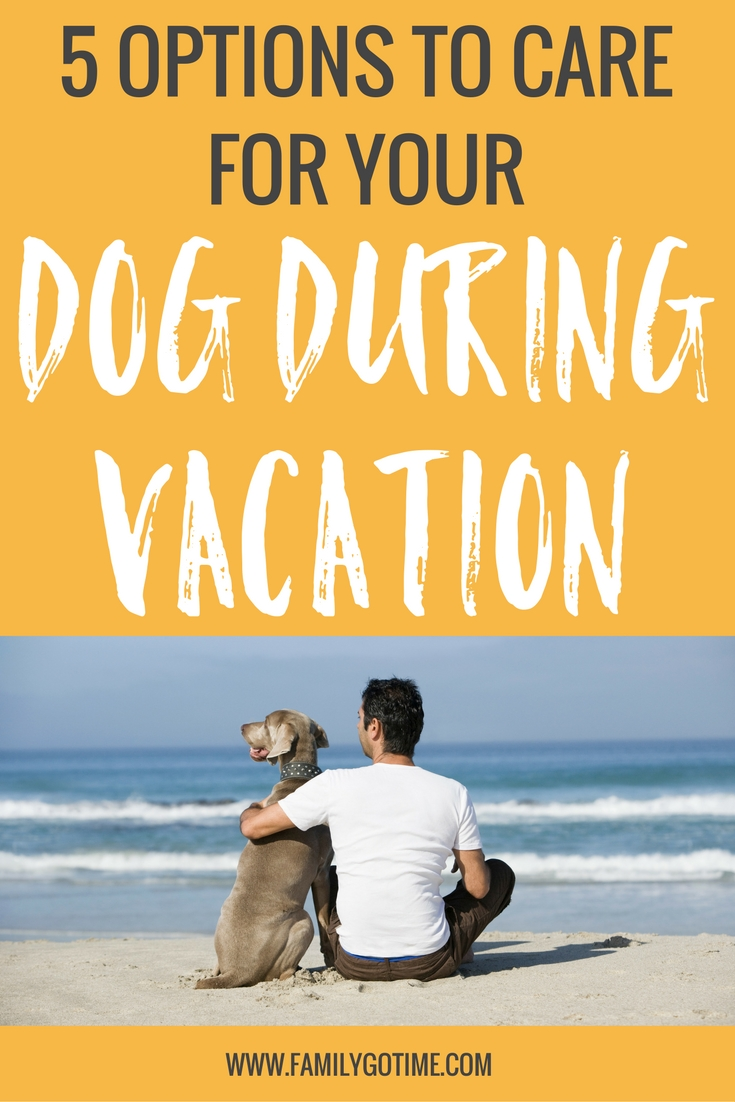 What Should I Do With My Soil: 4 Options For Your Dog While On Vacation